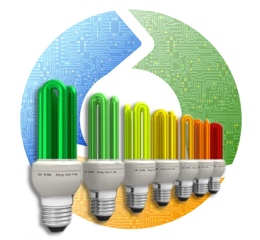 Energy Efficiency Surveys